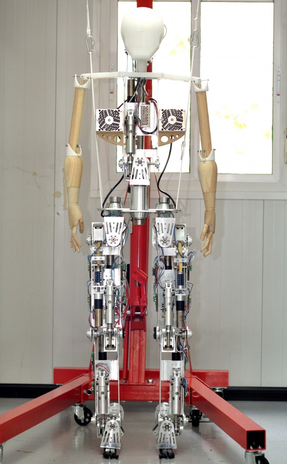 Binnochio: the biped robot from the H2R project